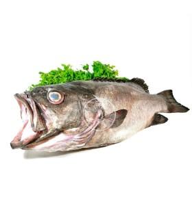 Comprar Mero | Comprar pescados online